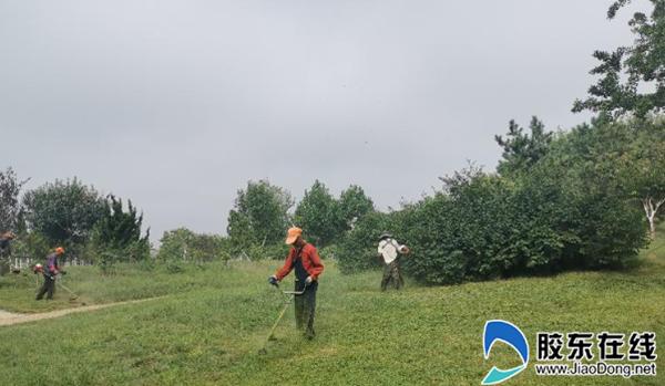 烟台海阳市奥体公园园林绿化工人高温下坚持工作