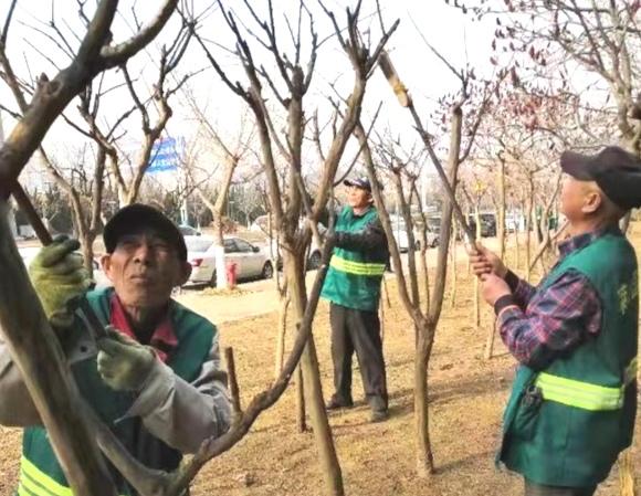 园林养护人员正在凤凰东路和迎春大街工作的情景