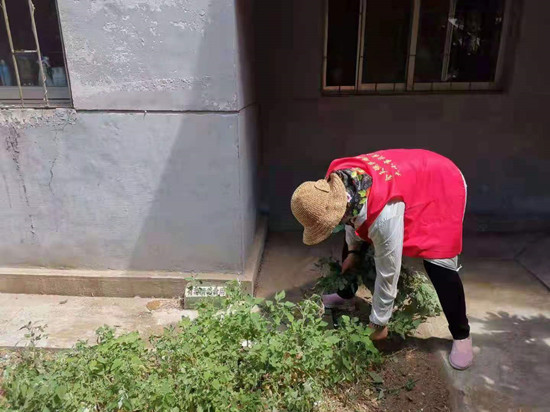 清理网格内杂草